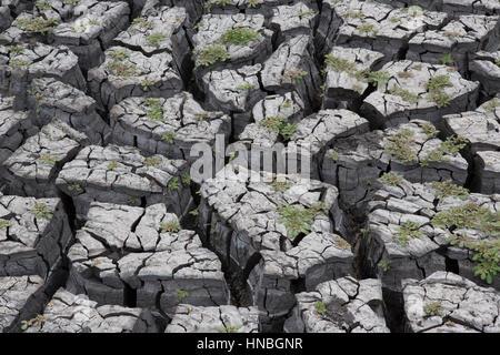 Abstrakte zeigt tief rissig Schlamm in einem ausgetrockneten Wasserloch in einer Dürre heimgesuchten Gegend in Ostafrika - Stockfoto