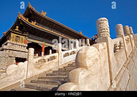 Frau, Tourist, Qianqing Tor, in der Verbotenen Stadt, Peking, China - Stockfoto