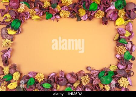 Trockenblumen Zusammensetzung. Gestell aus getrockneten Blüten und Blätter. Ansicht von oben flach legen. - Stockfoto