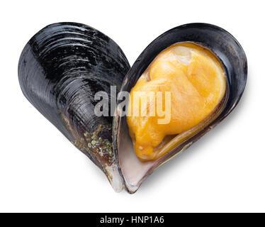 Muschel in Form von Herzen. Datei enthält Beschneidungspfade. - Stockfoto