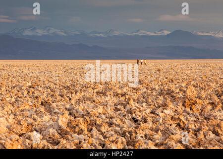 Sonnenuntergang, Trekking, Wanderer, Wanderer, Salz Formationen in Atacama Salzsee, im Hintergrund die Anden, Atacama - Stockfoto