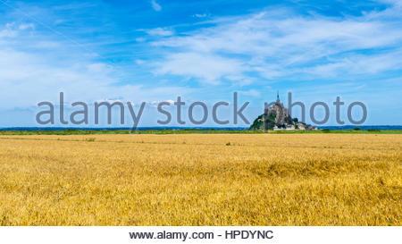 Frankreich, Normandie (Normandie), Manche Abteilung, Le Mont-Saint-Miichel mit Weizenfeld im Vordergrund. - Stockfoto