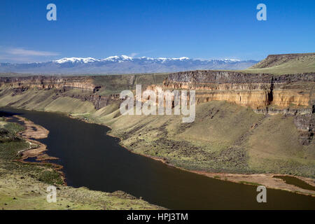 Snake River Canyon am Swan fällt-Damm, Owyhee County, Idaho, USA. - Stockfoto