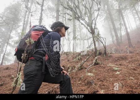 Reife Frauen Wanderer in nebligen Kiefernwald in Bergen auf Gran Canaria, Kanarische Inseln, Spanien. - Stockfoto