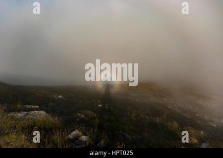 Brocken Gespenst im westlichen Tatra-Gebirge. Polen. - Stockfoto