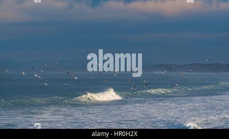 Surf Rollen an einem Strand in der Nähe von Monterey, Kalifornien, USA - Stockfoto