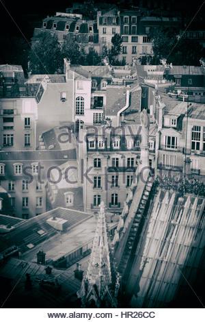 Blick von der Kathedrale Notre Dame de Paris - Stockfoto