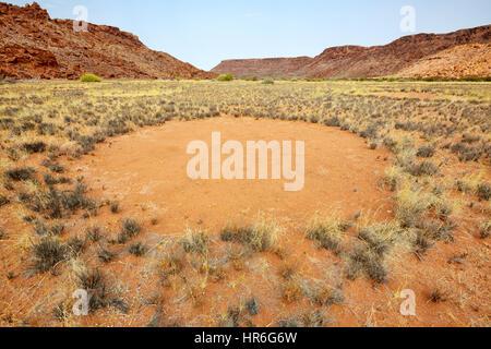 Fairy Circles, Twyfelfontein, Namibia, Afrika - Stockfoto