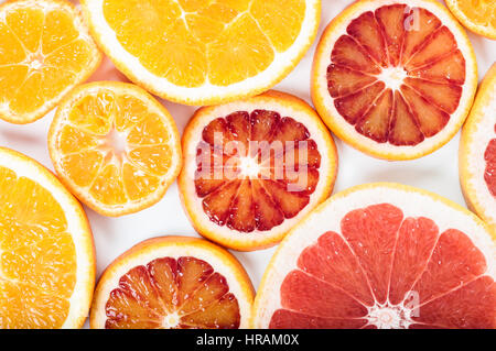Bunte frische Zitrusfrüchte auf weißem Hintergrund. Orange, Mandarine, Limette, Blutorange, Grapefruit. Obst-Hintergrund. - Stockfoto