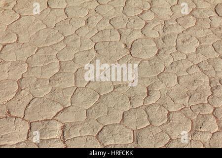 Schlamm Textur Trocknung Prisma Austrocknung Risse im Boden. - Stockfoto