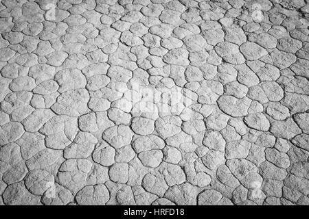 Monochrome Schlamm Textur Trocknung Prisma Austrocknung Risse im Boden. - Stockfoto