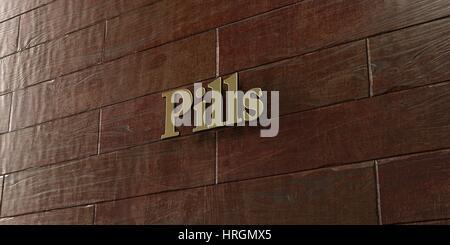 Pillen - Bronze Plakette an Ahorn Holz Wand - 3D gerenderten Lizenzgebühren frei Lager Bild montiert. Dieses Bild - Stockfoto