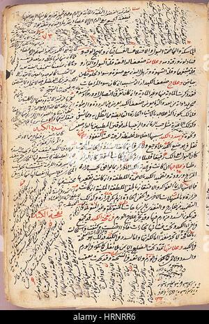 Islamische medizinische Enzyklopädie Inbegriffe Manuskript, 12. Jahrhundert - Stockfoto