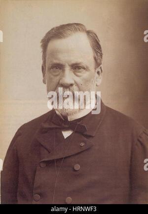 Louis Pasteur, französischer Bakteriologe - Stockfoto