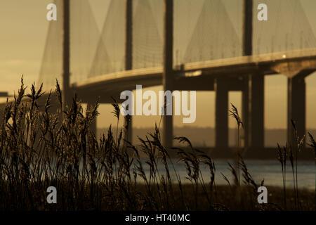Am frühen Morgen leuchtet die zweite Severn Crossing, Vereinigtes Königreich - Stockfoto