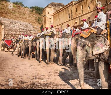 AMER, Indien - 18. November 2016: Eine Reihe von Elefanten mit ihren Fahrer oder Mahouts, wartet auf die Touristen - Stockfoto