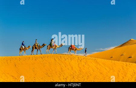 Touristen, Kamelreiten am Erg Chebbi in der Nähe von Merzouga in Marokko. Sahara, Afrika - Stockfoto