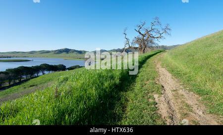 Panoramablick über die Lagune Valley Park in Vacaville, Kalifornien, USA, featuring die Chaparral im Winter mit - Stockfoto
