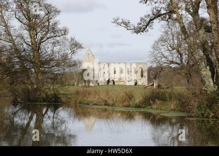 Ein Blick über den Fluss Wey zu den Ruinen der Newark Priory nahe Ripley, Surrey - Stockfoto