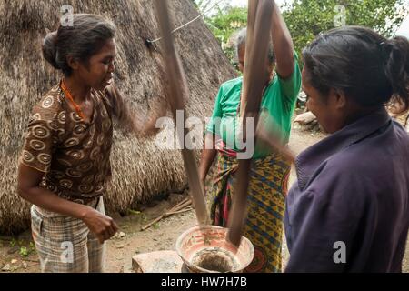 Indonesien, Ost-Nusa Tenggara, West-Timor, South Central Timor Regency, Fatumnasi, Frauen stampfen Mais - Stockfoto