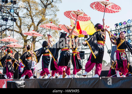 Japanische schrift regenschirme oder sonnenschirme in for Traditionelles japan