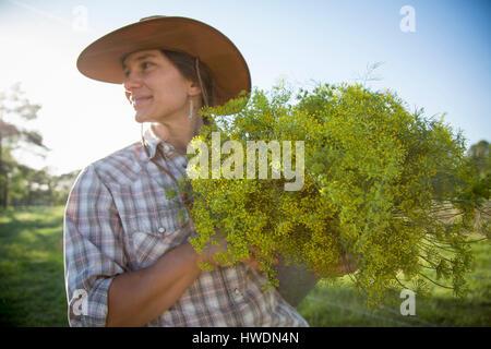 Junge Frau hält Bund Blüte Dill (Anethum Graveolens) vom Bauernhof Blumenwiese - Stockfoto
