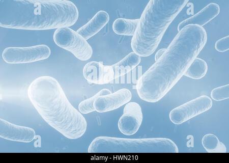 Digitales Bild des blauen Bakterien im menschlichen Körper 3d - Stockfoto