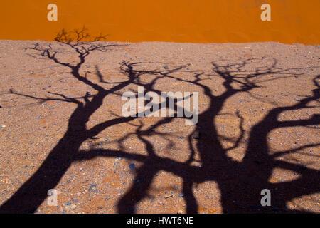 Namib-Wüste in Sossusvlei, Region Menschen klettern Sanddüne