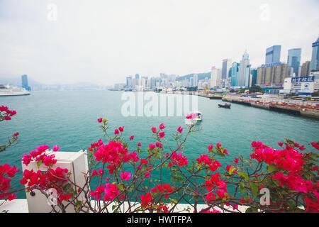 Schöne super Weitwinkel- Sommer Luftaufnahme Blick auf Hong Kong Island Skyline, Victoria Bay Harbour, mit Wolkenkratzern, - Stockfoto