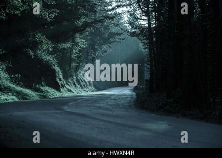 Dunklen Wald mit leeren Straße in fliehendes Licht. Emotionale, gotischen Hintergrund, unheimliche natürliche Szene - Stockfoto