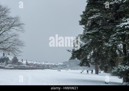 Menschen beim Spielen im Schnee in Petersfield Heath, Petersfield, Hampshire, Vereinigtes Königreich. - Stockfoto
