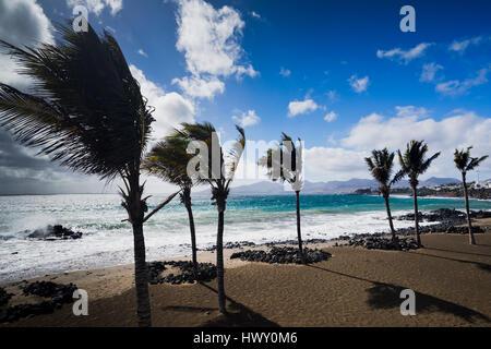 Strand von Puerto del Carmen auf Lanzarote - Stockfoto