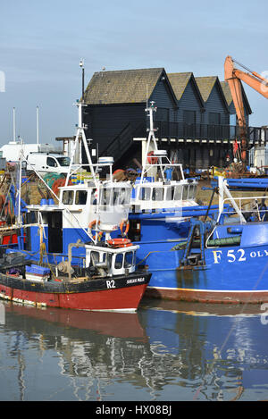 Angelboote/Fischerboote im Hafen von Whistable, Kent - Stockfoto