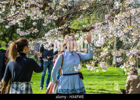 Einen schönen sonnigen Samstag Nachmittag gefunden Londonern und Touristen gleichermaßen unter selfies unter den - Stockfoto