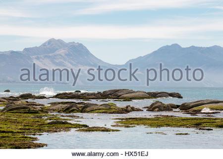 Küstenlandschaft, Südinsel von Neuseeland - Stockfoto