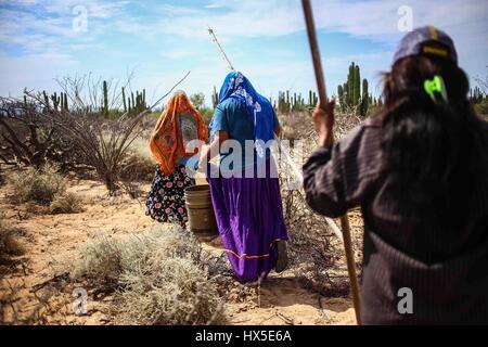 Suche nach einheimischen Frauen