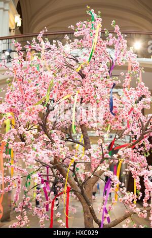 Blumen Frühling Grußkarte mit Cherry Blossom Flowers im weißen ...