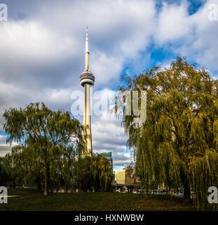 CN Tower zwischen der Vegetation des Harbourfront - Toronto, Ontario, Kanada - Stockfoto
