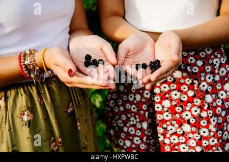 Zwei Frauen Hände halten ein paar Brombeeren - Stockfoto