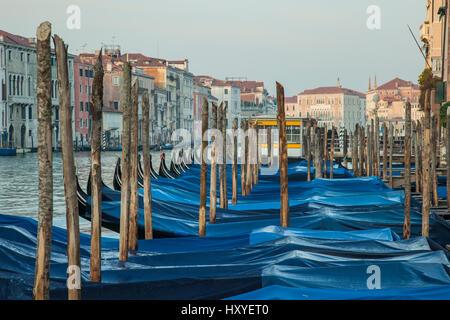 Gondeln vor Anker am Canal Grande, Venedig, Italien. Am frühen Morgen im Frühling.