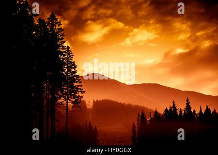 Eine schöne, bunte, abstrakte Berglandschaft mit Bäumen in eine rote Tonalität. Dekorative, künstlerische Optik. - Stockfoto