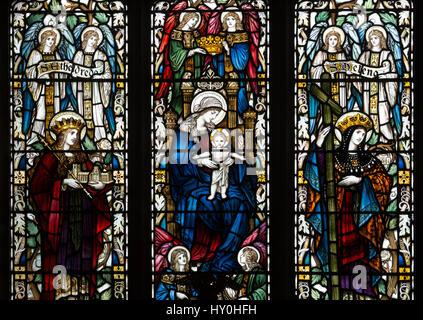 Glasmalerei in St. Nikolaus, St. Maria und St. Thomaskirche, Blakeney, Norfolk, England, UK - Stockfoto
