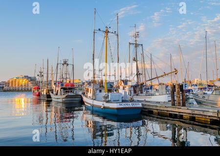 Angelboote/Fischerboote im Hafen, Victoria, Britisch-Kolumbien, Kanada - Stockfoto