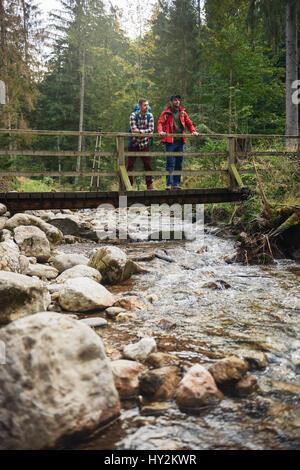 Wanderer, betrachten von einer Brücke im Wald - Stockfoto