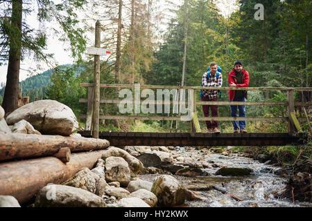 Wanderer genießen die Aussicht von einer Brücke im Wald - Stockfoto