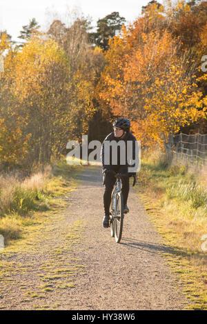 Schweden, vastergotland, lerum, reifer Mann reiten Fahrrad auf unbefestigte Straße durch Wald - Stockfoto