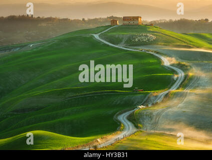 Italy,Tuscany.Province der Siena.Crete Senesi. Felder in der Nähe von Asciano - Stockfoto