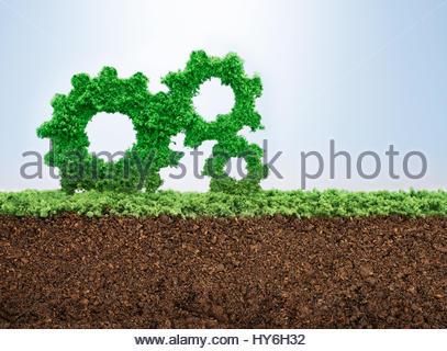 Wachstum Geschäftskonzept mit Rasen wächst in Form von Zahnrädern - Stockfoto