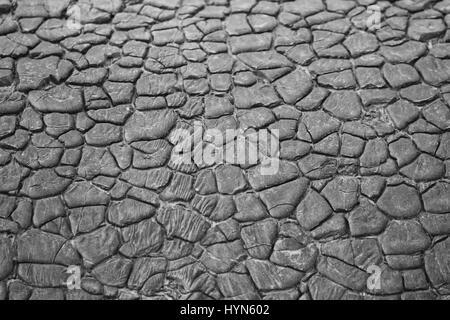 Flachdach textur  Dach-Bitumen-Textur Stockfoto, Bild: 109092657 - Alamy
