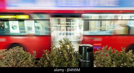 London, England, UK - 31. Dezember 2010: Ein traditionelle London roten Doppeldecker-Bus geht eine Gruppe von ausrangierten Weihnachtsbäumen auf einer Straße in Camden. Stockfoto